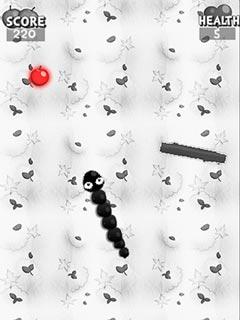 Image Black and white snake